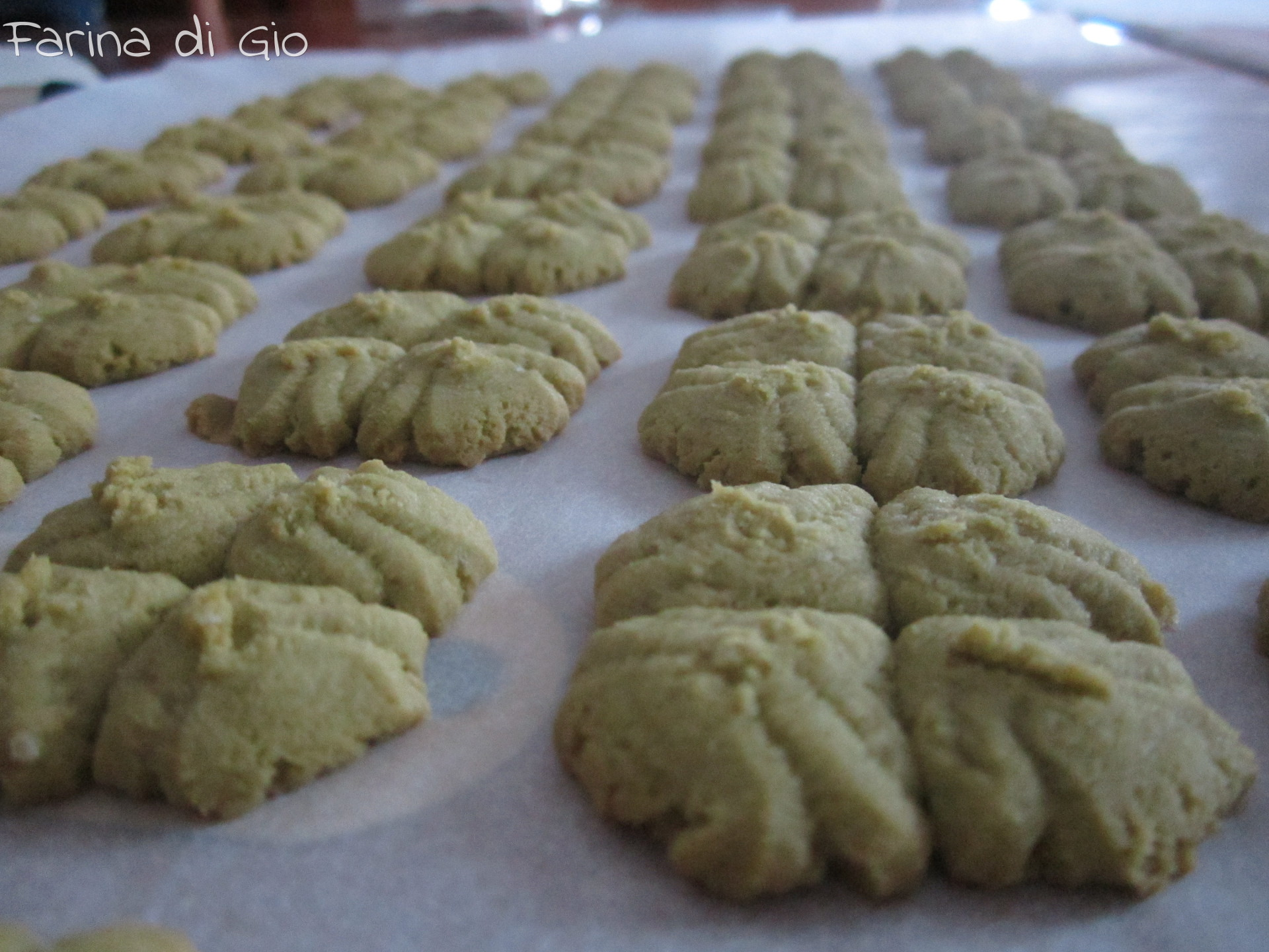 biscotti te verde