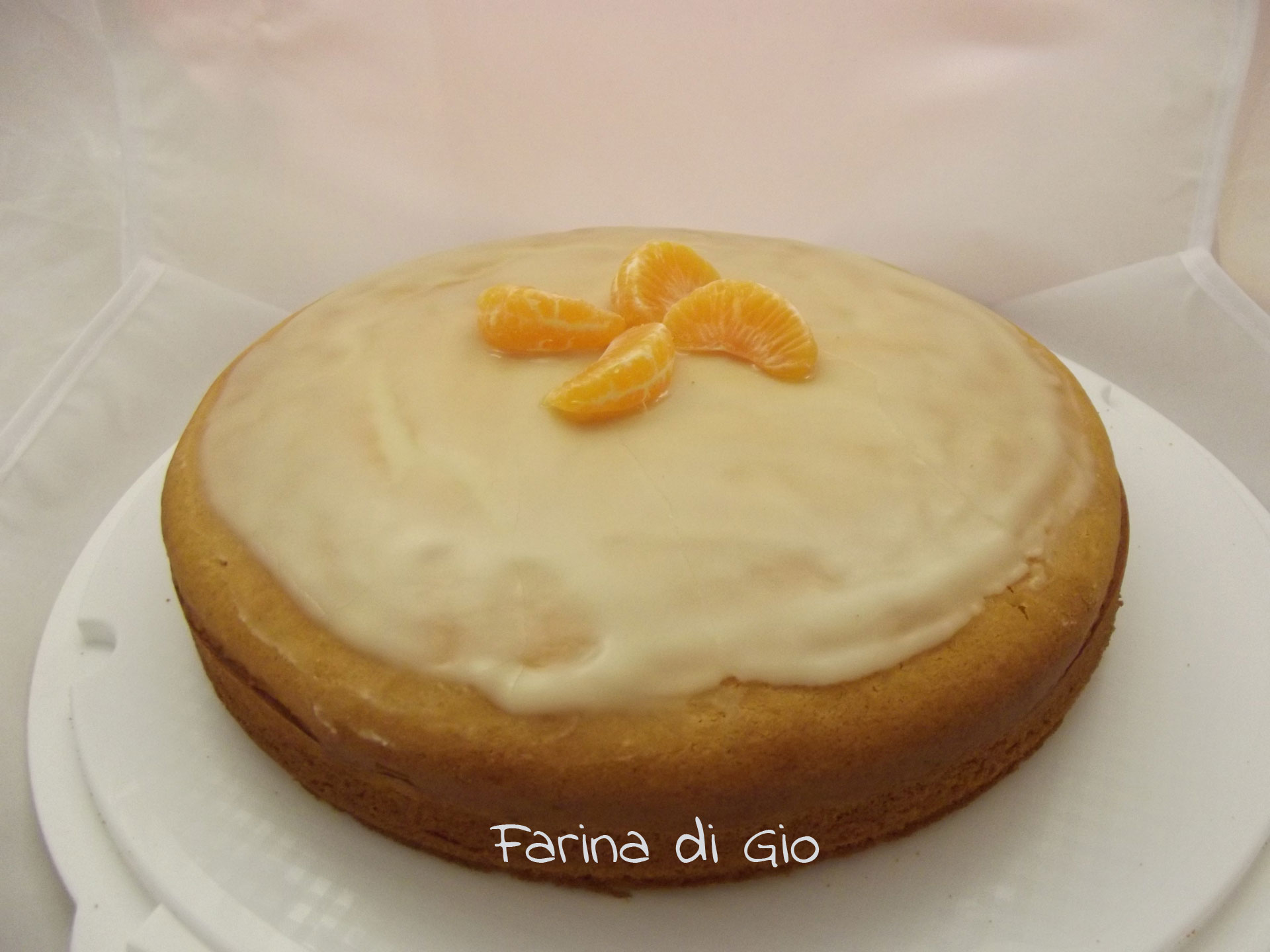 torta morbida glassa clementine senza frumento